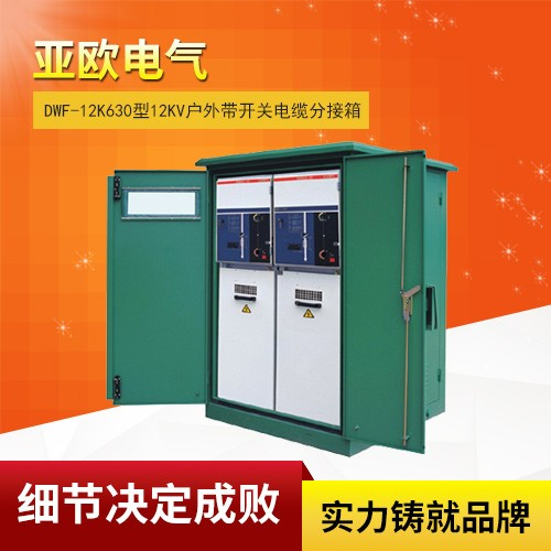 DWF-12k630 12Kv outdoor with switch cable distribution box